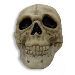 Calavera Cráneo Pirata Decoración Halloween (Entrega Inmediata)