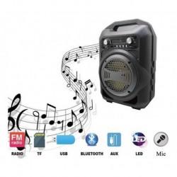 Parlante Micrófono Amplificador Bs-12 Usb Sd Bluetooth (Entrega Inmediata)