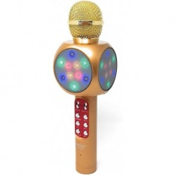 Micrófono Karaoke Wster Ws-1816 Para Niñas Y Niños (Entrega Inmediata)