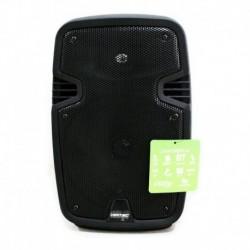Cabina Sonido Nt-p9876 4800w Microfono Tipo Usb Bluetooth Fm (Entrega Inmediata)