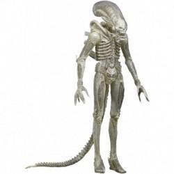 Figura NECA Alien 1/4 Scale Translucent Prototype Suit Conce (Importación USA)