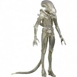 """Figura NECA Aliens Series 7 Concept 79' Action Figure 7"""" Sca (Importación USA)"""