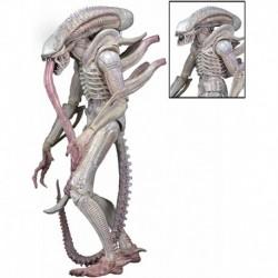 """Figura NECA Aliens 7"""" Scale Series 9 Xenomorph ALBINO Drone (Importación USA)"""